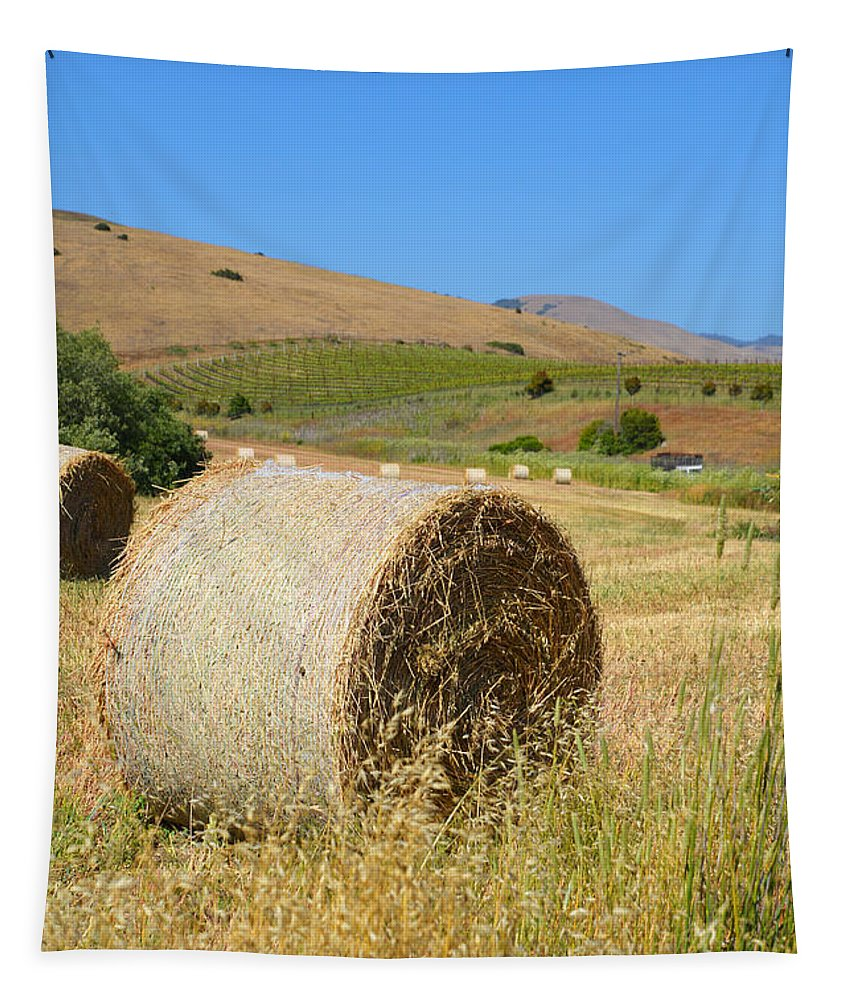 Hay Tapestry featuring the photograph Roll'n The Hay by Lynn Bauer