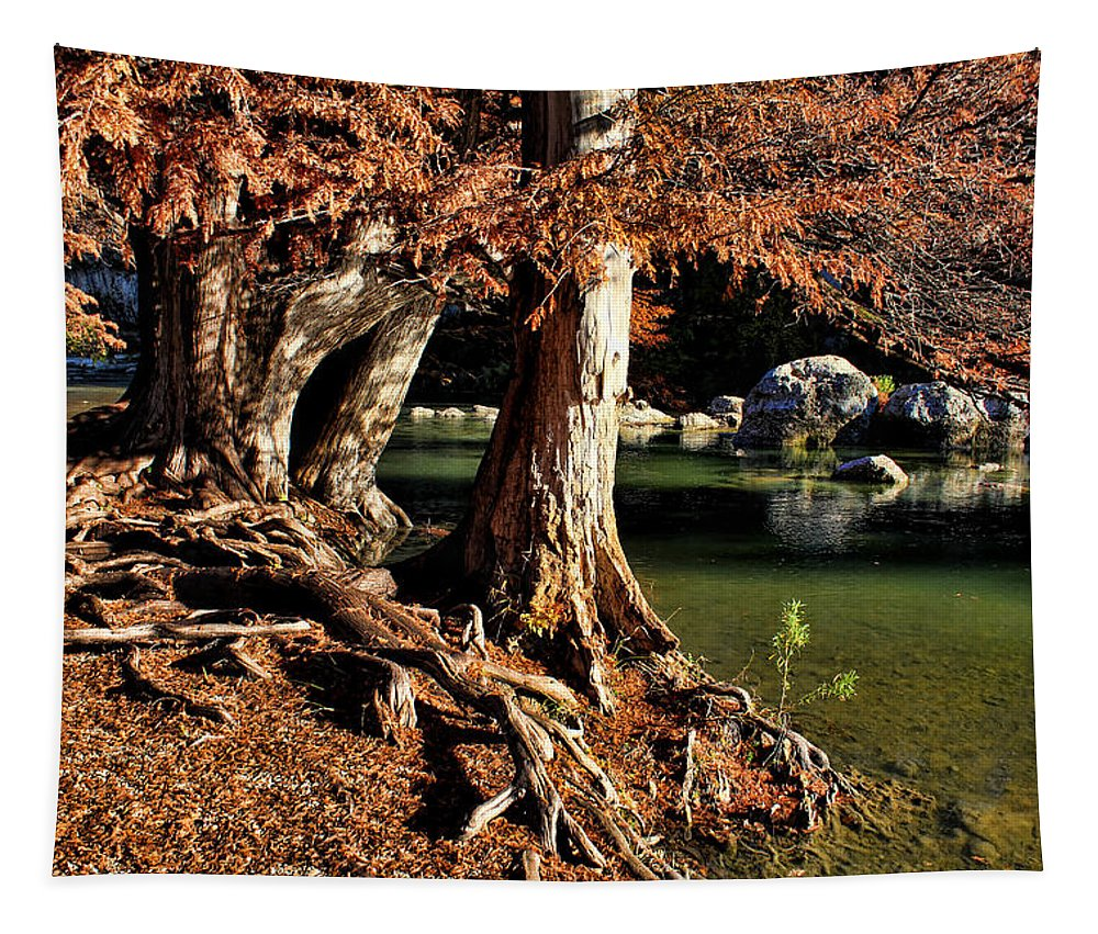 America Tapestry featuring the photograph Roots by Judy Vincent