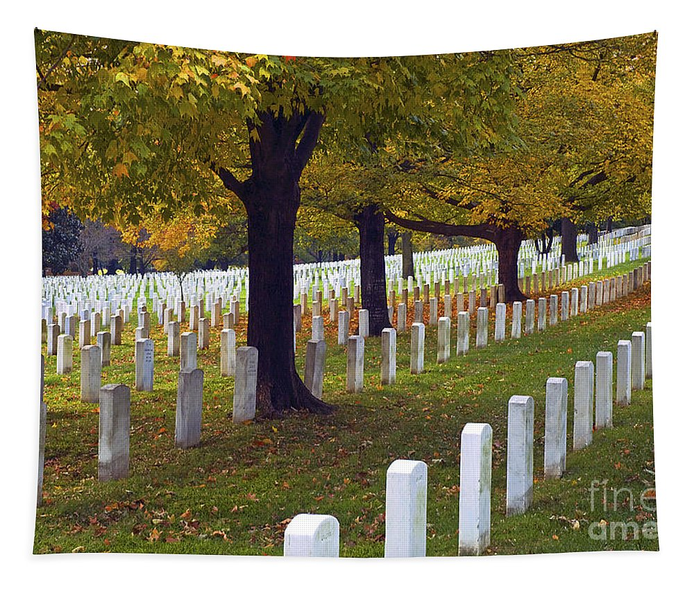 Arlington Tapestry featuring the photograph Rows Of White by Paul W Faust - Impressions of Light