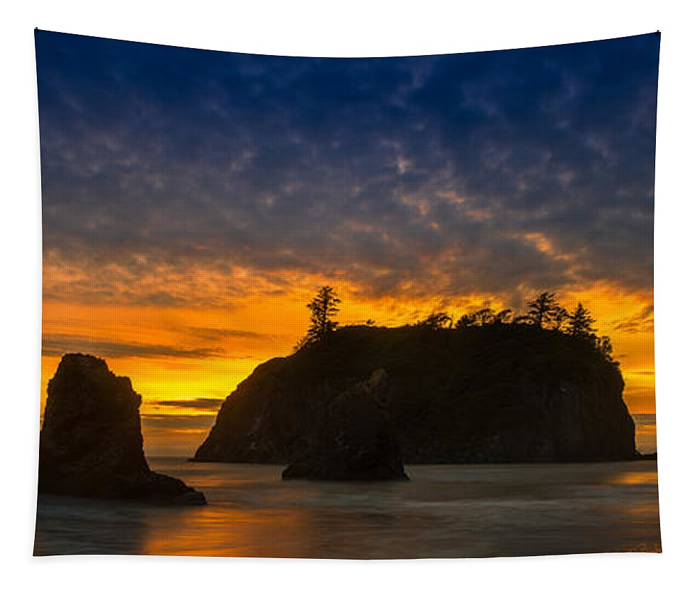 Olympic Tapestry featuring the photograph Ruby Beach Olympic National Park by Steve Gadomski