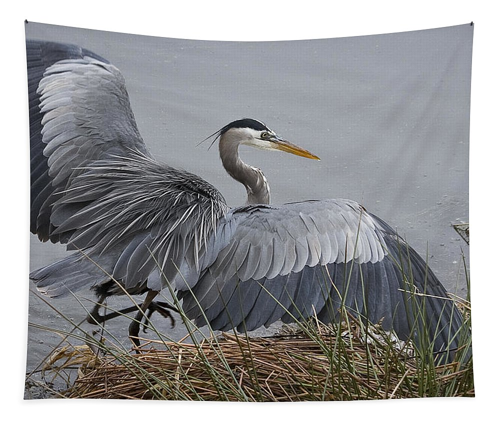 Ruffled Feathers Tapestry featuring the photograph Ruffled Feathers by Wes and Dotty Weber