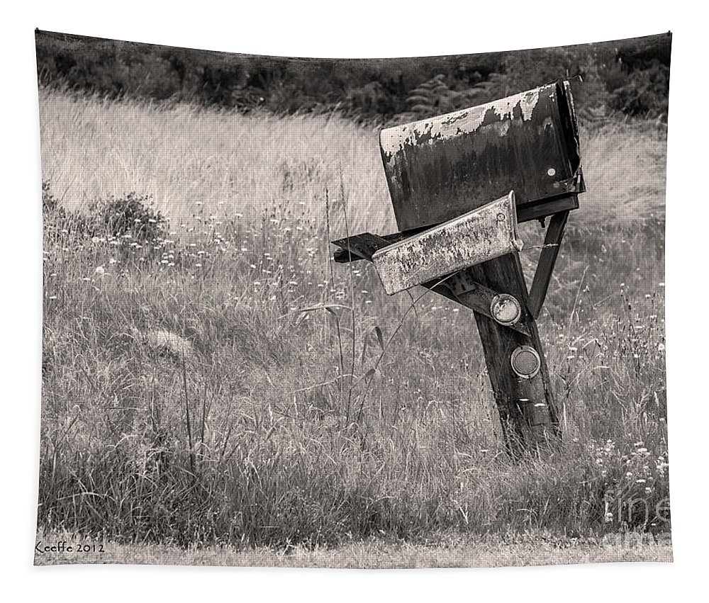 Mailbox Tapestry featuring the photograph Rural Route Mail Call by Jean OKeeffe Macro Abundance Art