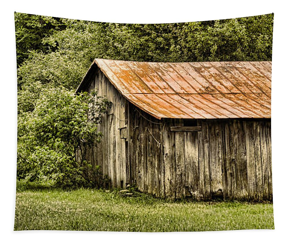 Barn Tapestry featuring the photograph Rustic by Heather Applegate