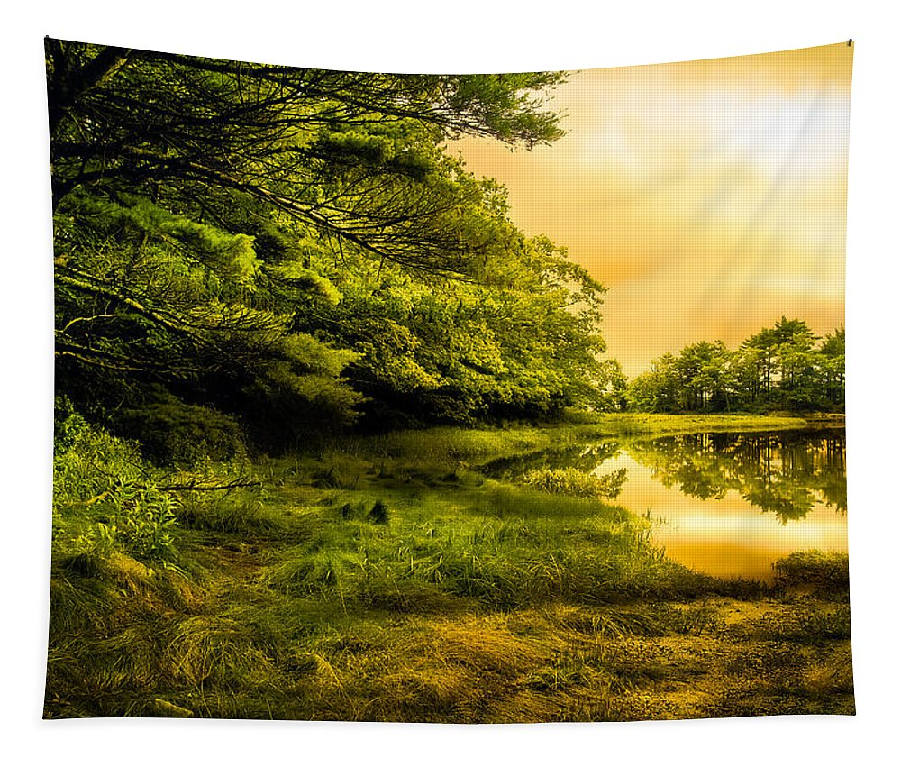 Bob Orsillo Tapestry featuring the photograph Salt Marsh Kittery Maine by Bob Orsillo