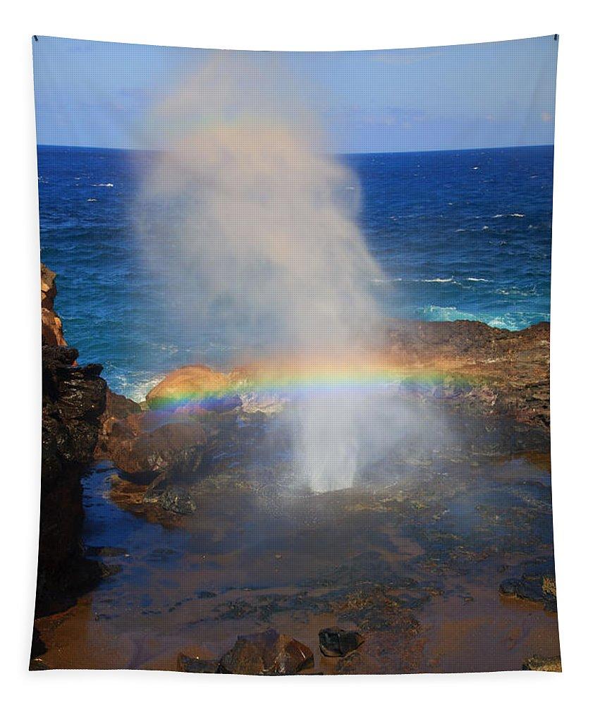 Rainbow Tapestry featuring the photograph Salt Spray Rainbow by Mike Dawson