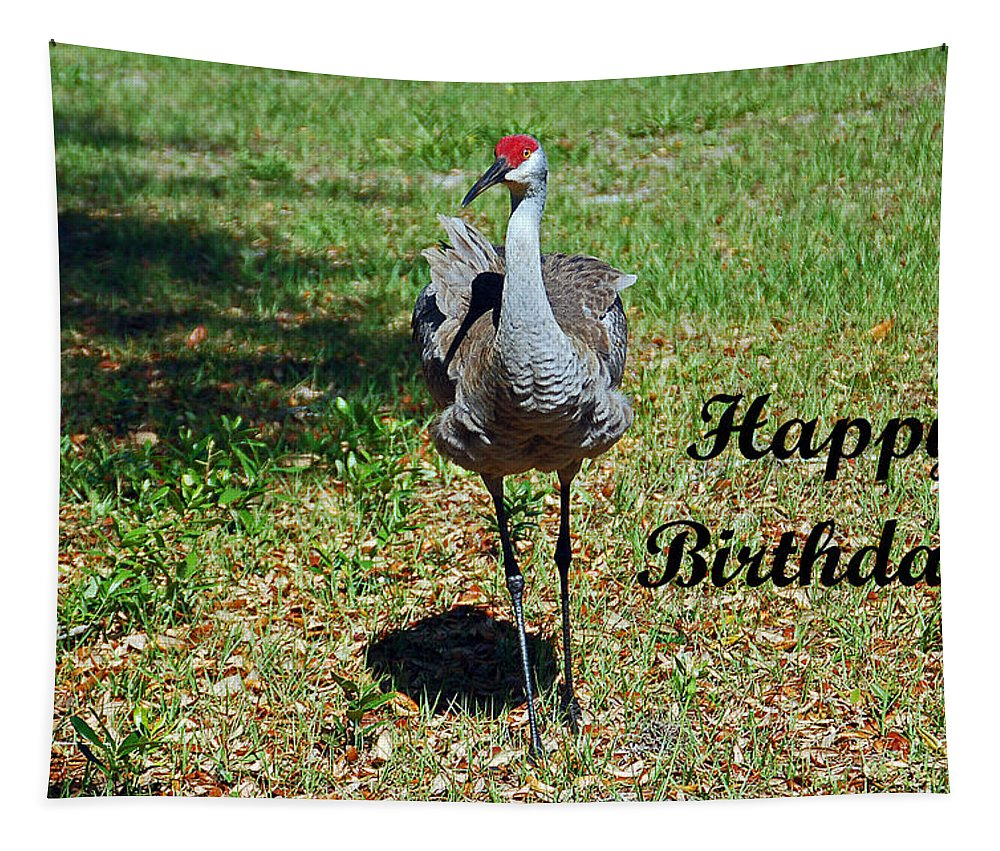 Crane Tapestry featuring the photograph Sandhill Crane Birthday by Aimee L Maher ALM GALLERY