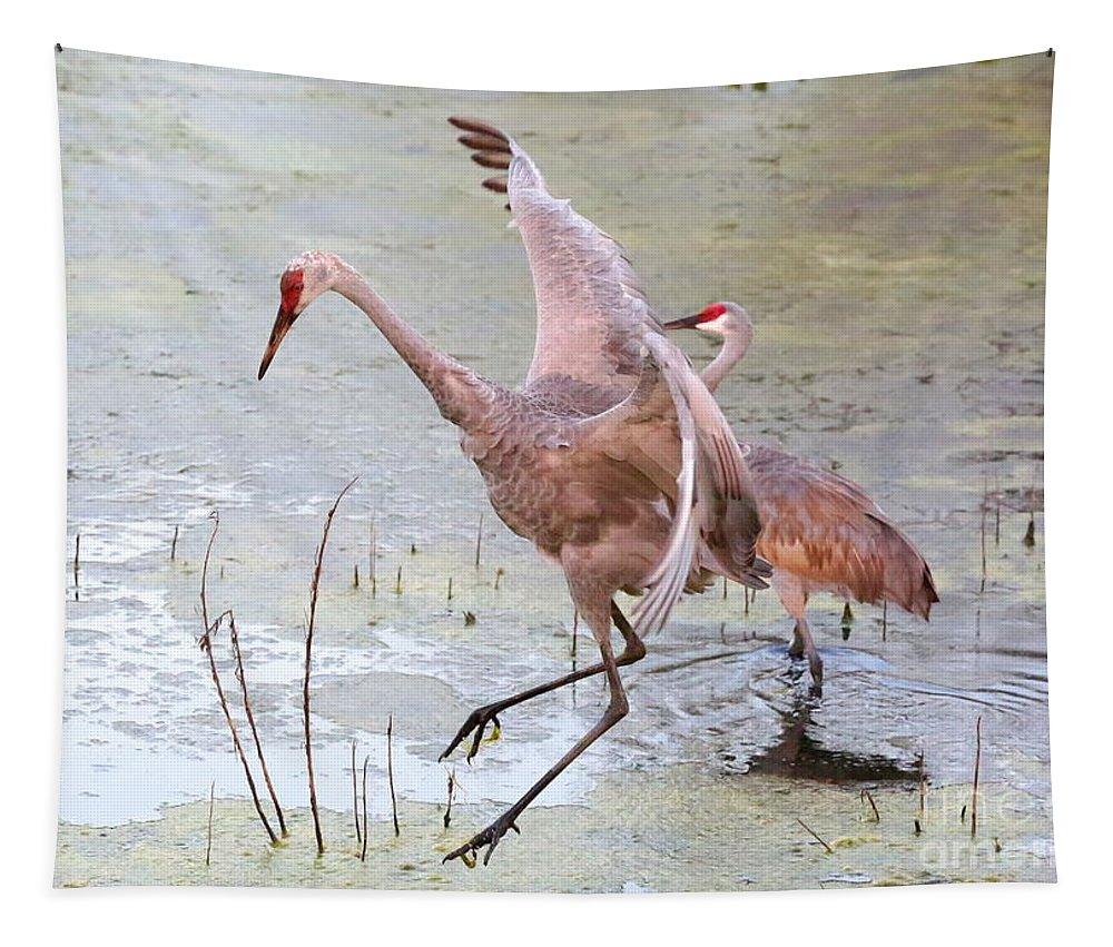 Sandhills Tapestry featuring the photograph Sandhill Leap Of Faith by Carol Groenen
