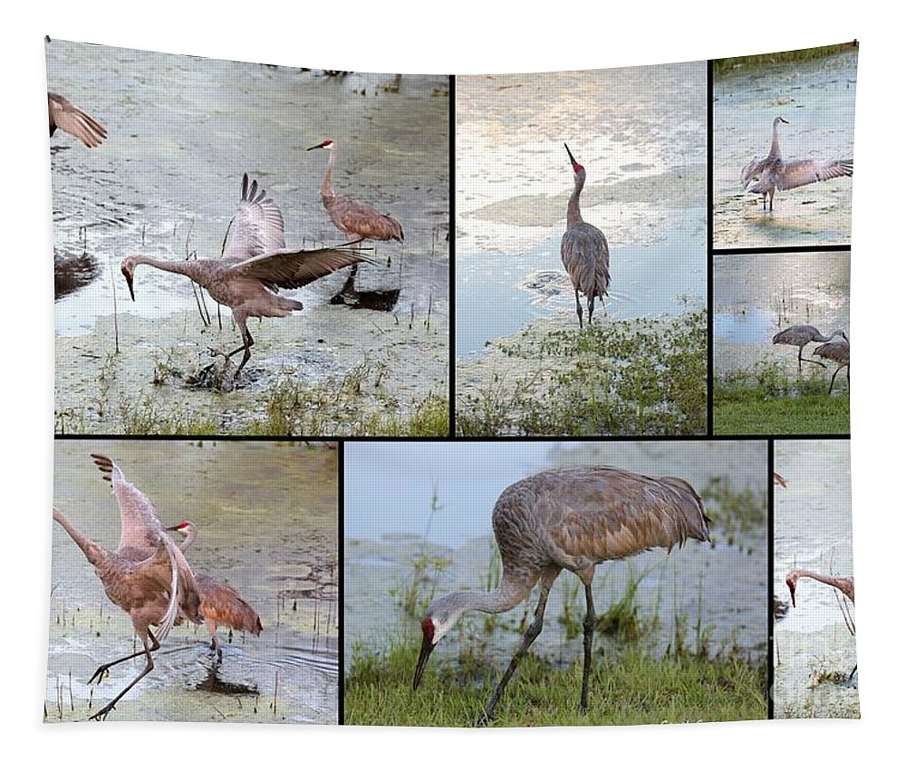 Sandhills Tapestry featuring the photograph Sandhill Show by Carol Groenen