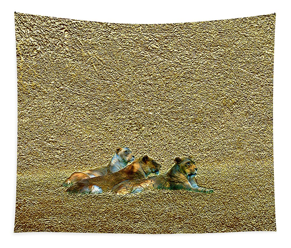 Lions Tapestry featuring the photograph Savannah Queens by Steve Karol
