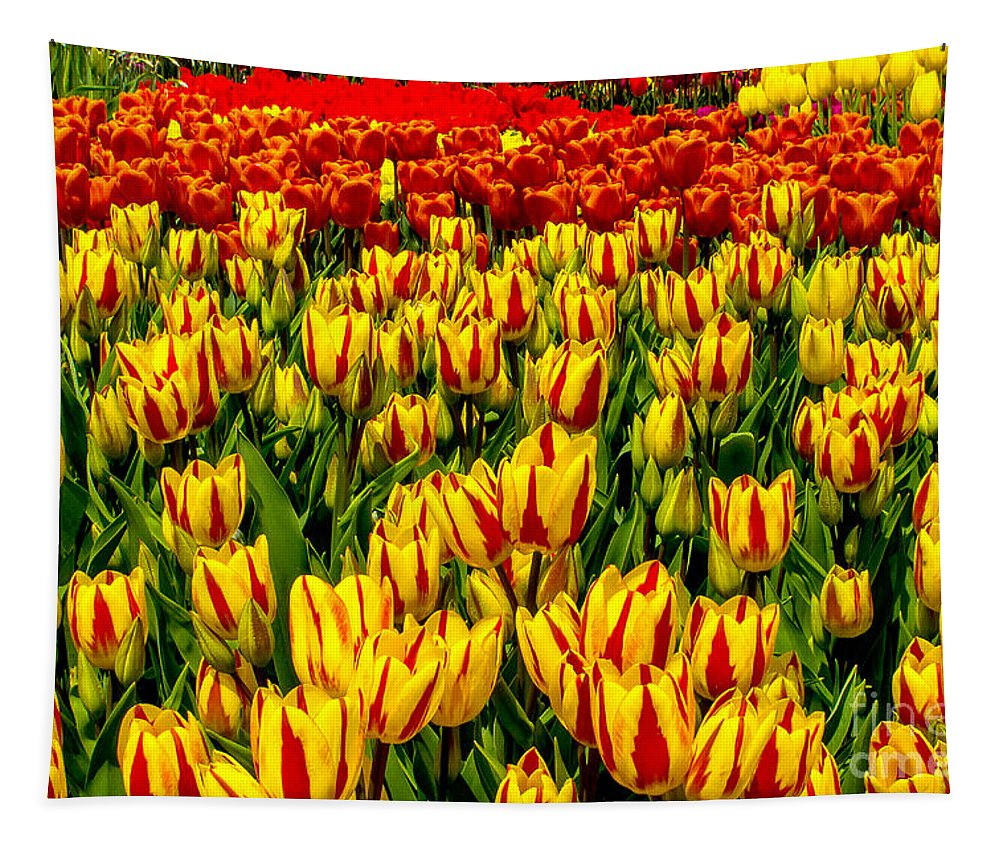 Beautiful Tapestry featuring the photograph Sea Of Tulips by Nick Zelinsky