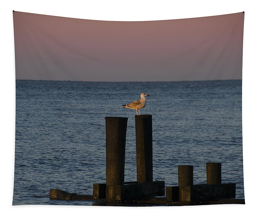 Seagull Tapestry featuring the photograph Seagull Seascape by Bill Cannon