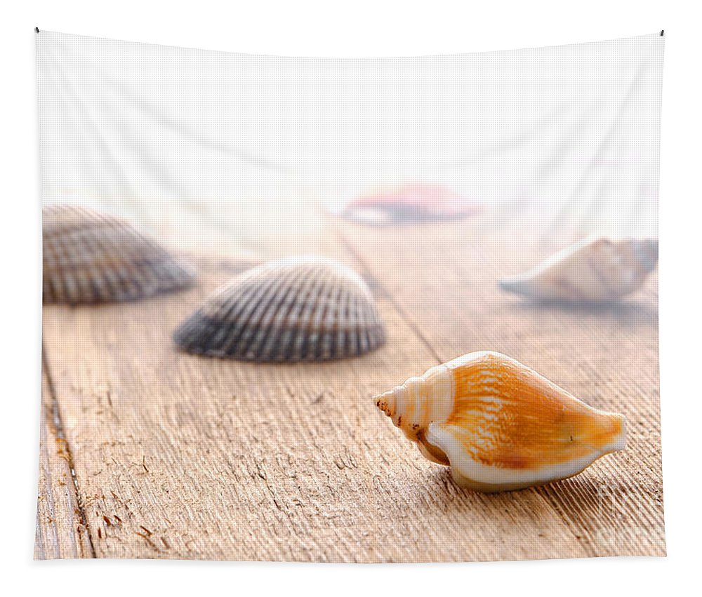 Seashell Tapestry featuring the photograph Seashells On Wood Dock by Olivier Le Queinec