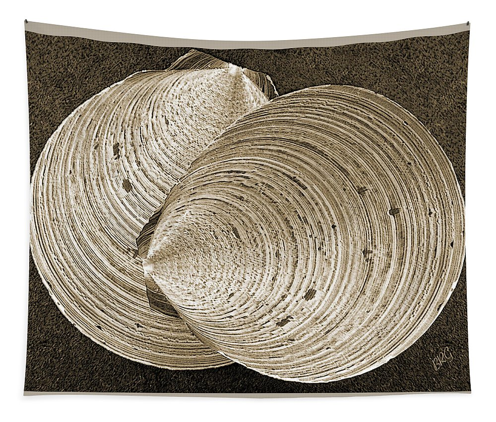 Seashell Tapestry featuring the photograph Seashells Spectacular No 11 by Ben and Raisa Gertsberg
