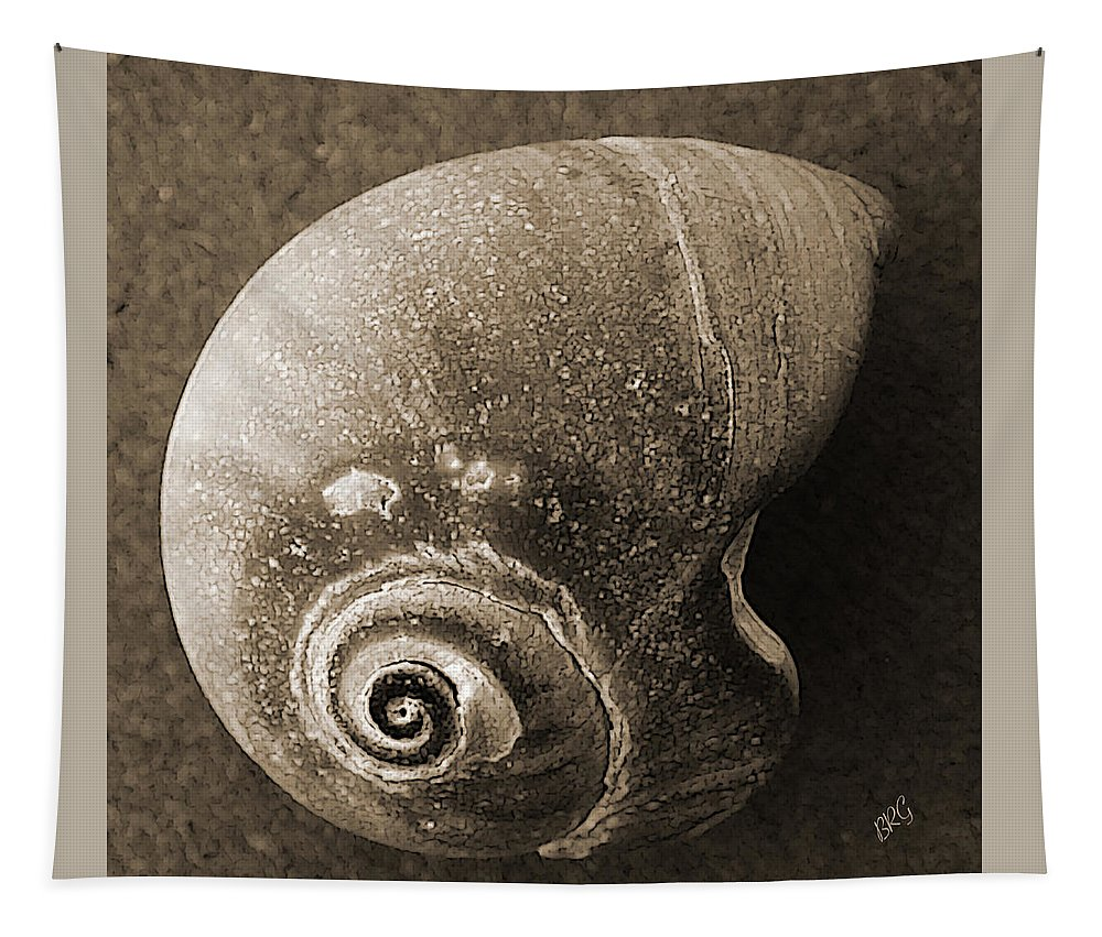 Seashell Tapestry featuring the photograph Seashells Spectacular No 31 by Ben and Raisa Gertsberg