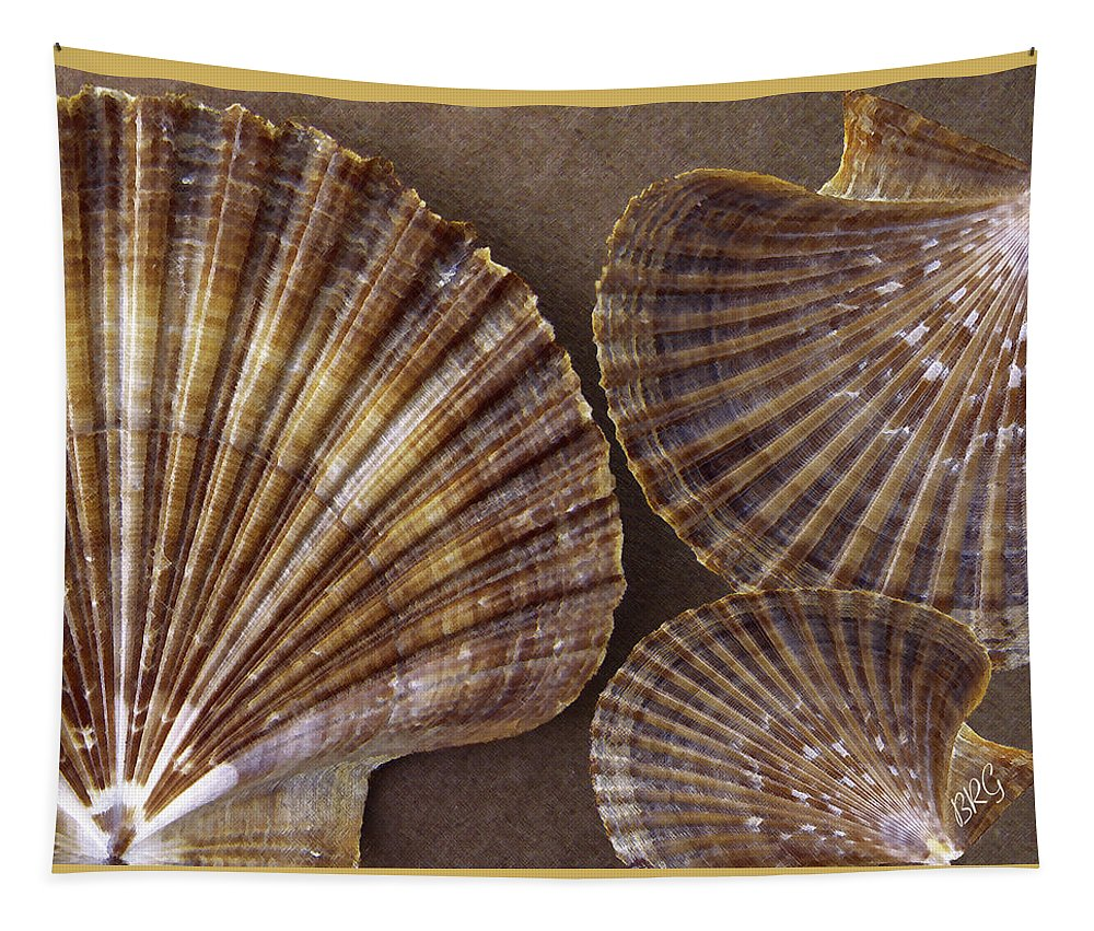 Seashell Tapestry featuring the photograph Seashells Spectacular No 7 by Ben and Raisa Gertsberg