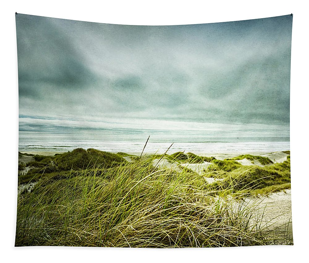 Seashore Tapestry featuring the photograph Seashore Longing by Belinda Greb