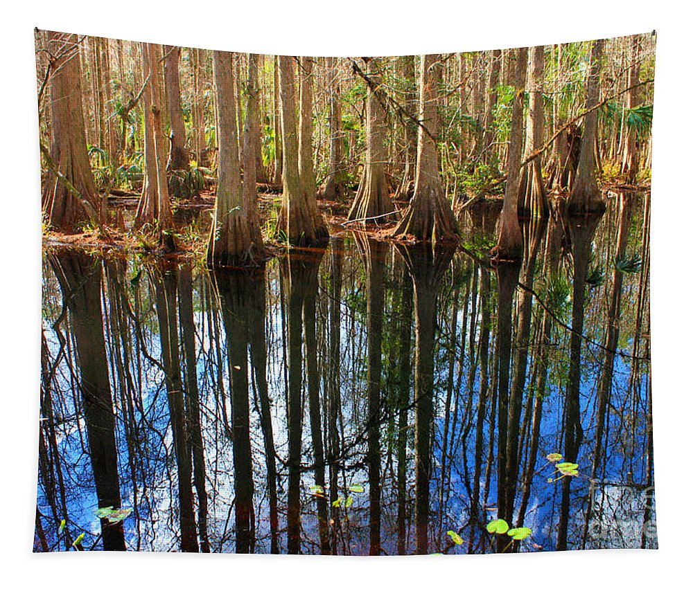 Sebring Tapestry featuring the photograph Sebring Cypress Swamp Reflection by Carol Groenen