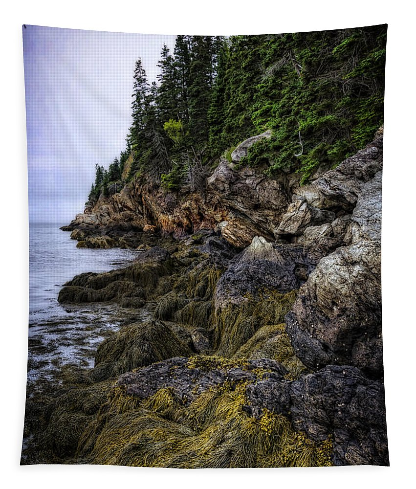 Castine Tapestry featuring the photograph Secret Hideaway by Joan Carroll
