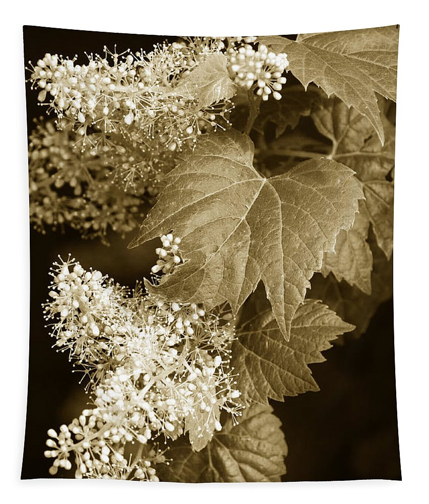 Sepia Tapestry featuring the photograph Sepia Flower Vine by Christina Rollo