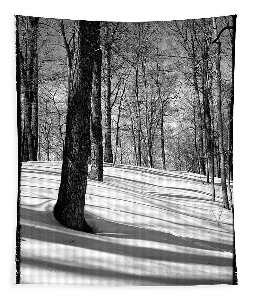 Mccauley Mountain Ski Area Tapestry featuring the photograph Shadows At Mccauley Mountain by David Patterson
