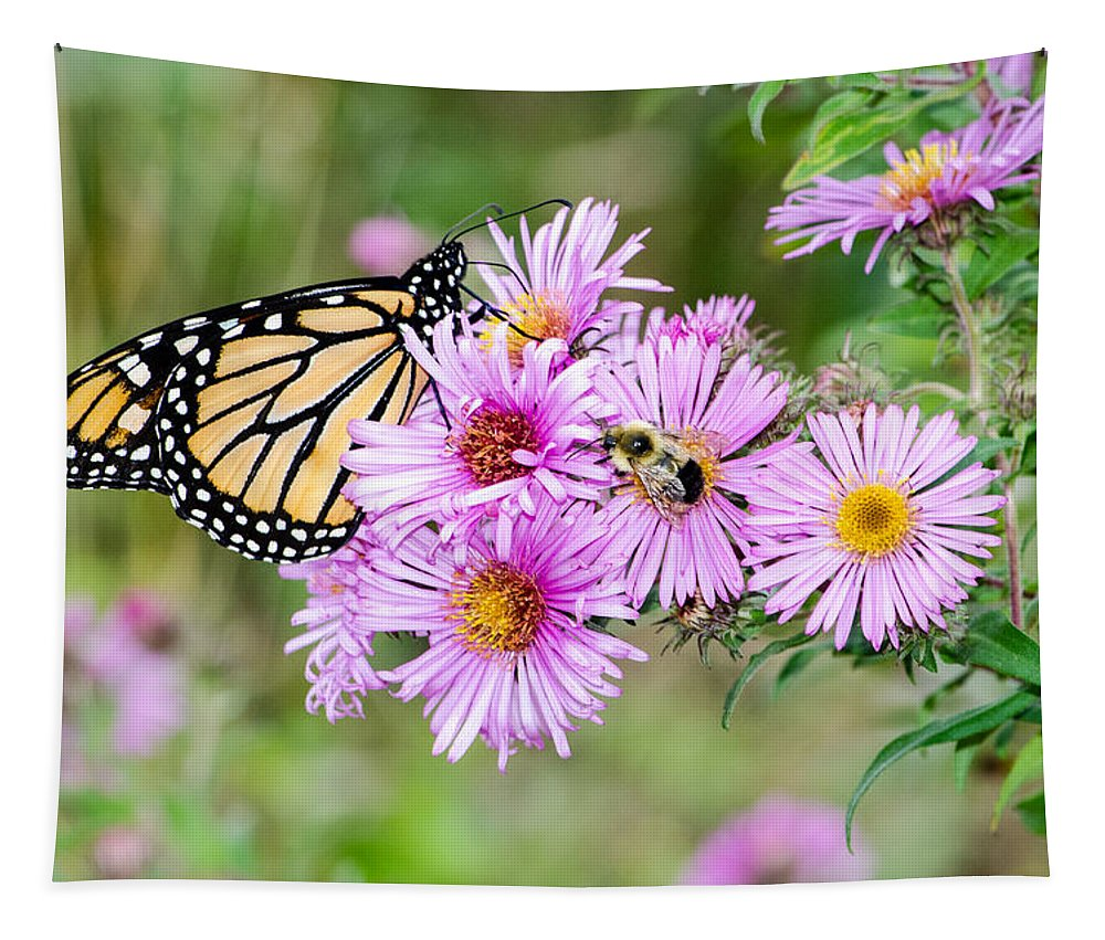 Monarch Tapestry featuring the photograph Sharing Nicely by Susan McMenamin