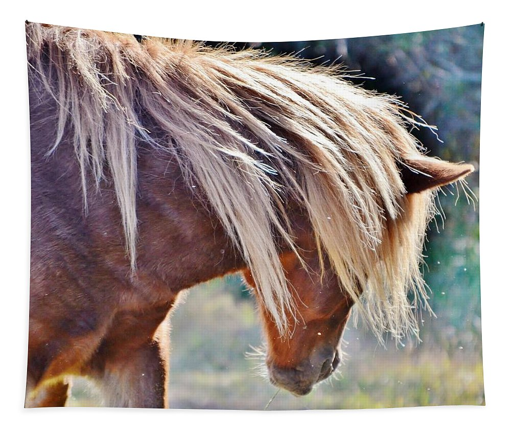 Wild Horse Tapestry featuring the photograph She Tossed Her Mane - Wild Pony Of Assateague by Kim Bemis