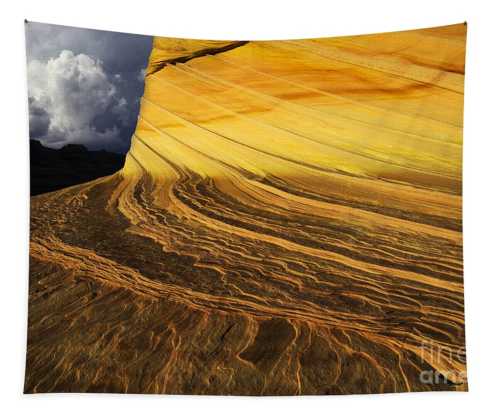 Sheer Magic Tapestry featuring the photograph Sheer Magic North Coyote Buttes Arizona by Bob Christopher
