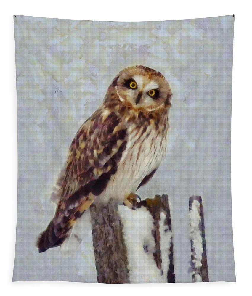 Short Eared Owl Tapestry featuring the digital art Short-eared Owl  by Mark Kiver