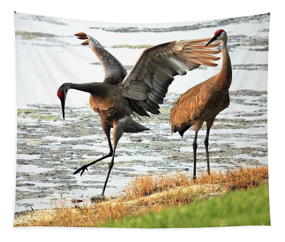 Sandhill Cranes Tapestry featuring the photograph Showoff by Carol Groenen