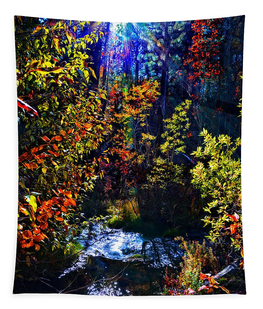 Fall Tapestry featuring the photograph Sierra Star by Lynn Bauer