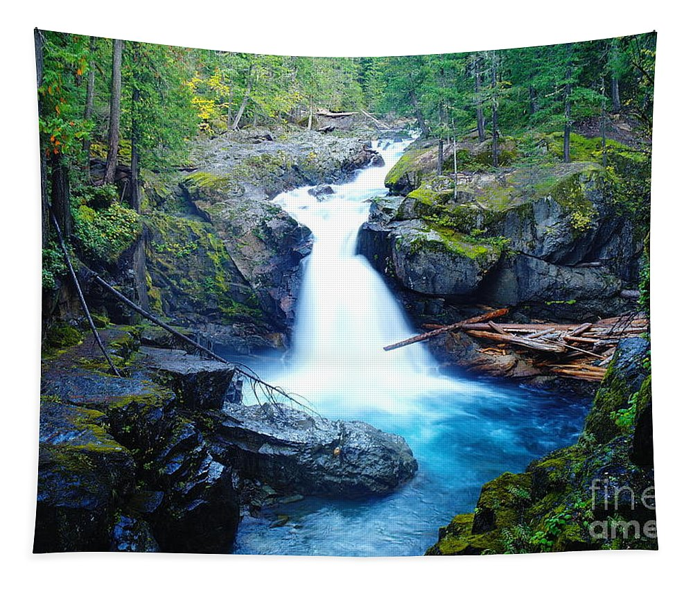 Waterfalls Tapestry featuring the photograph Silver Falls by Jeff Swan