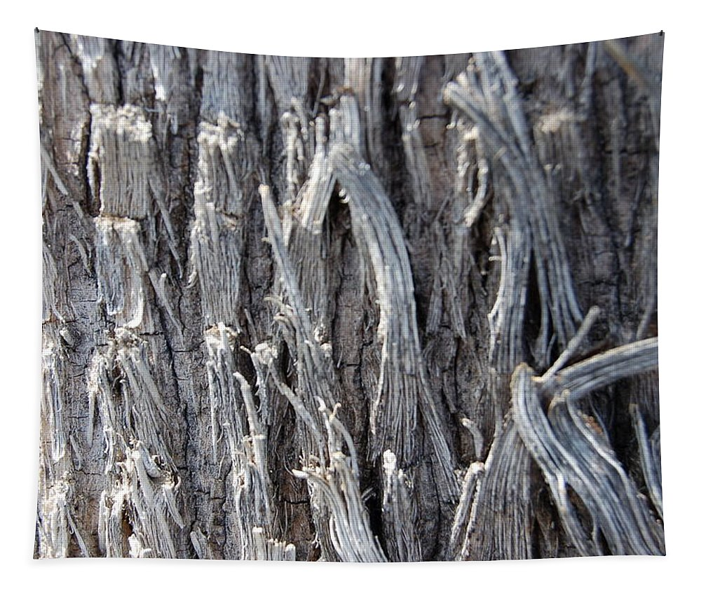 Silver Wire Heavy Strands Broken Ends Abstract Decorative Tree Bark Nature Tapestry featuring the photograph Silver Heavy Metal by Linda Brody