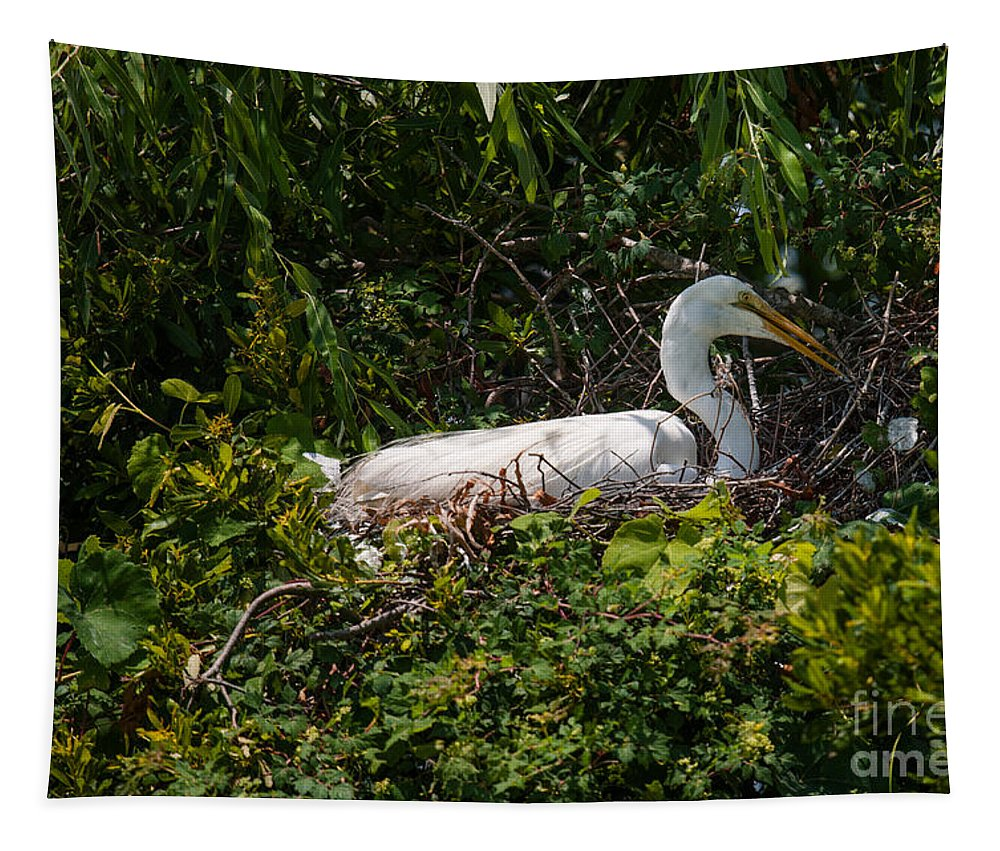 Egret Tapestry featuring the photograph Sitting On The Nest by Dale Powell