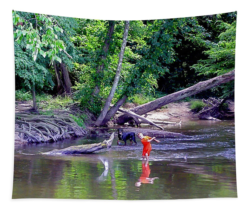 2d Tapestry featuring the photograph Skipping Stones by Brian Wallace