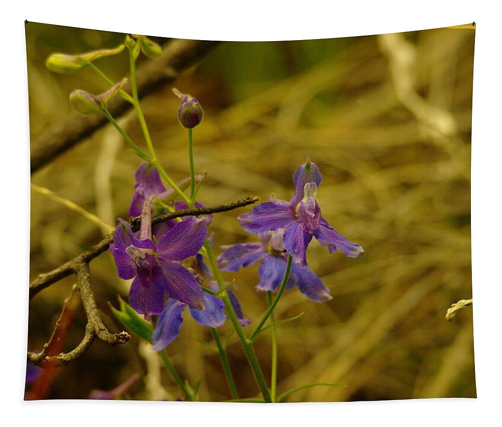 Flowers Tapestry featuring the photograph Small Wild Blossoms by Jeff Swan