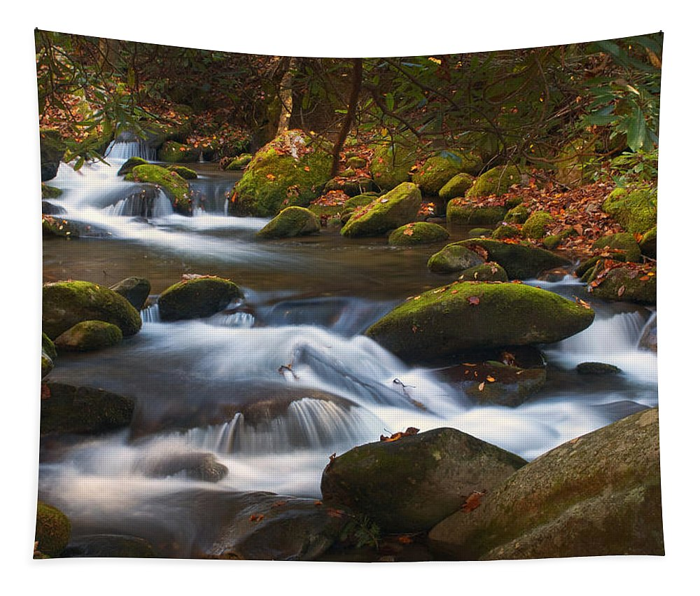 Smoky Mountains Tapestry featuring the photograph Smoky Mtn Autumn Stream by Paul W Faust - Impressions of Light