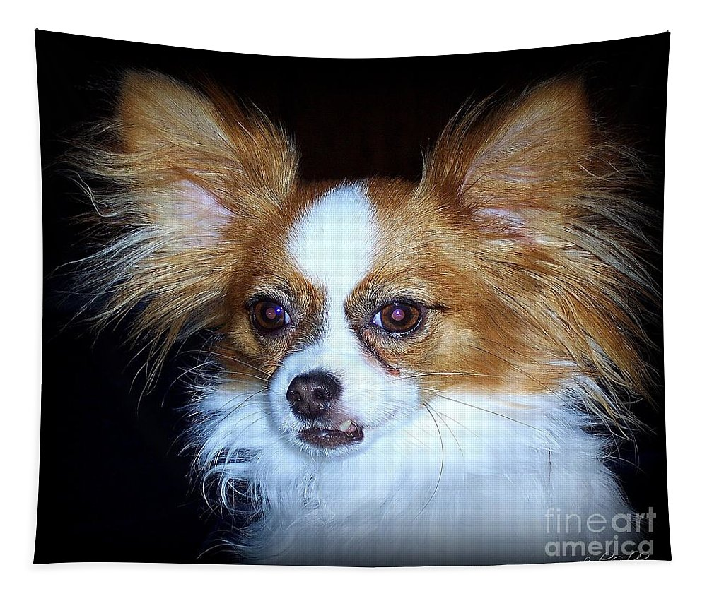 Papillon Tapestry featuring the photograph Snickers by Linda Galok