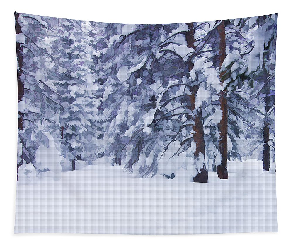 Beauty Tapestry featuring the photograph Snow-dappled Woods by Don Schwartz