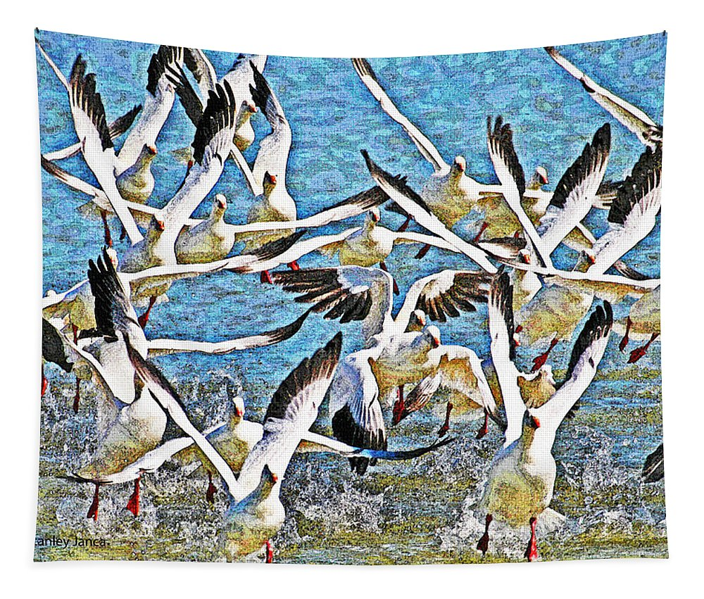 Snow Geese Panic Tapestry featuring the photograph Snow Geese Panic by Tom Janca
