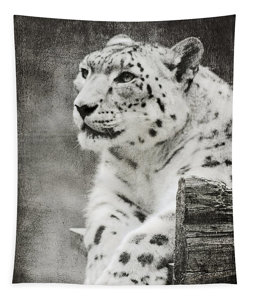 Snow Leopard Tapestry featuring the photograph Snow Leopard 2 by Linda Sannuti