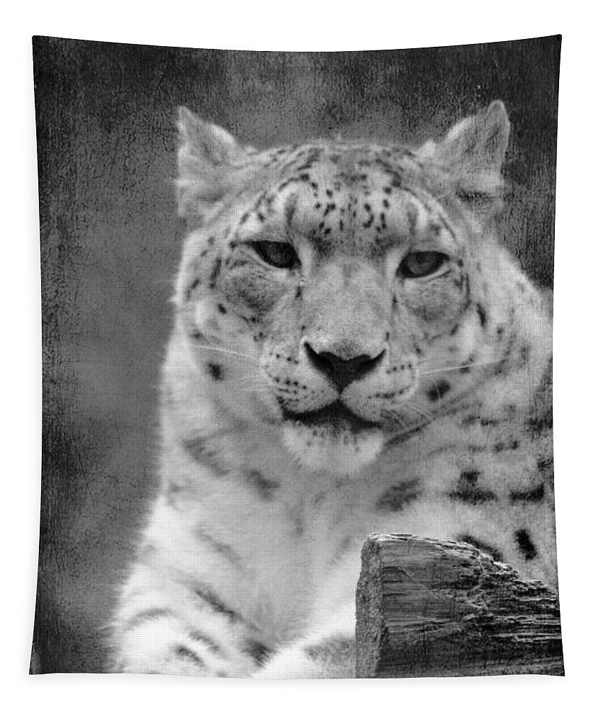 Snow Leopard Tapestry featuring the photograph Snow Leopard by Linda Sannuti