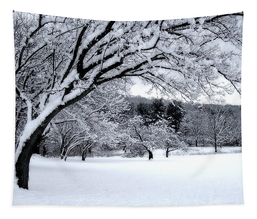 Snow Tapestry featuring the digital art Snowfall by Bruce Rolff