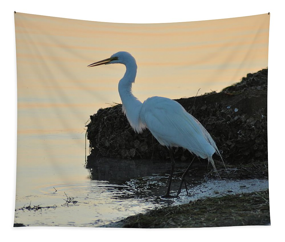 Snowy Tapestry featuring the photograph Snowy Egret by Bill Cannon