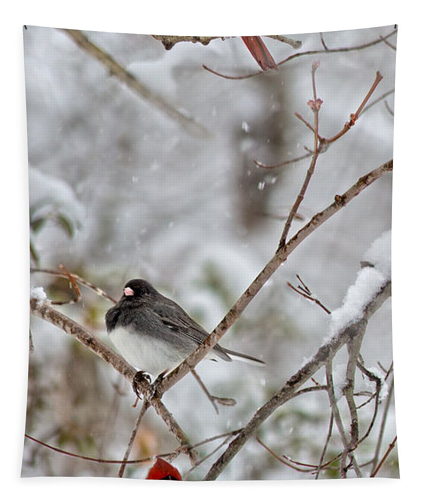 Red Tapestry featuring the photograph Snowy Grace Cardinals by Betsy Knapp