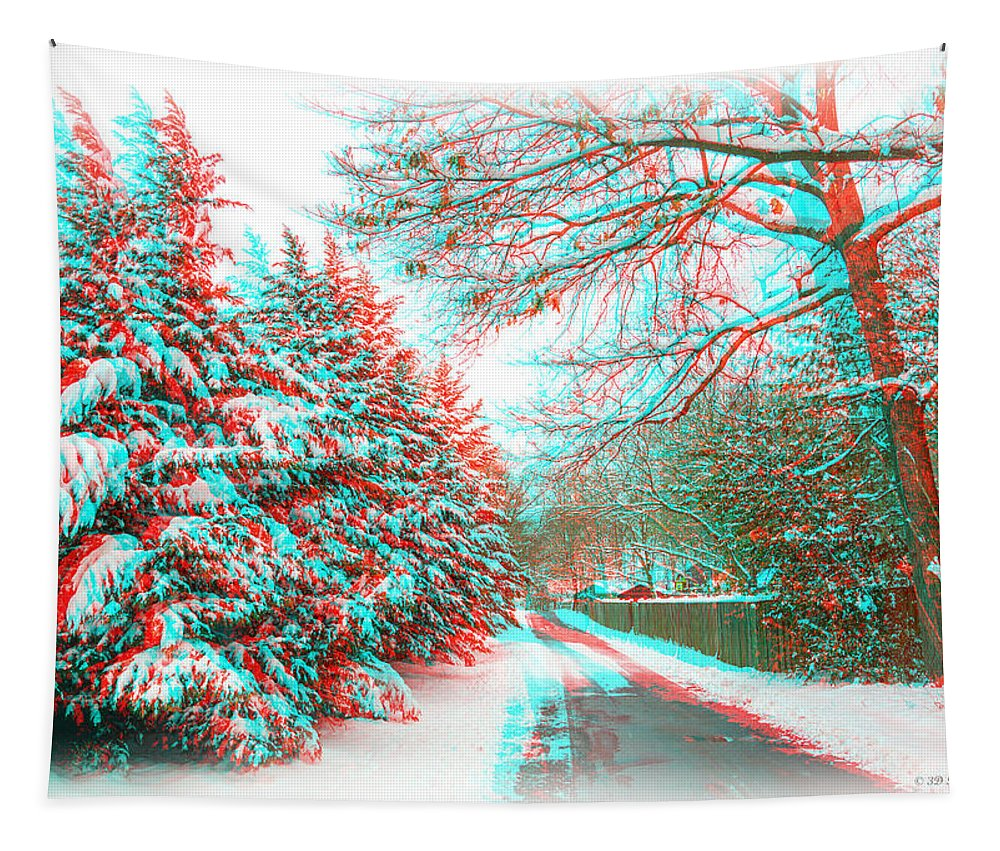 3d Tapestry featuring the photograph Snowy Lane - Use Red/cyan Filtered 3d Glasses by Brian Wallace
