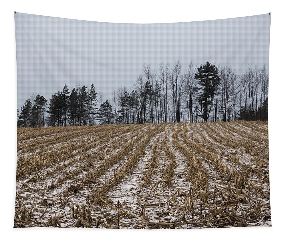 Cornfield Tapestry featuring the photograph Snowy Winter Cornfields by Georgia Mizuleva