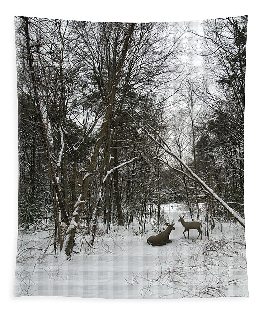 2d Tapestry featuring the photograph Snowy Wooded Path by Brian Wallace