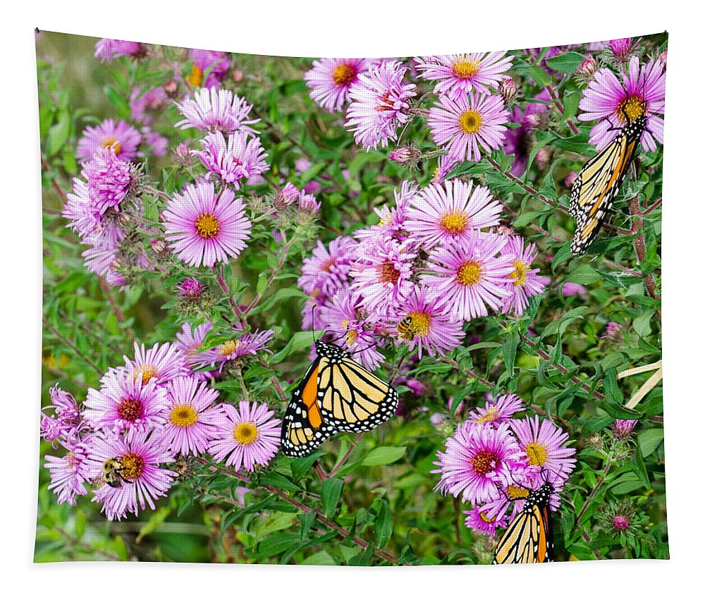 Monarchs Tapestry featuring the photograph So Many Wings by Susan McMenamin