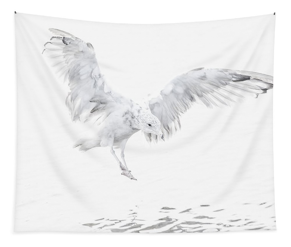 Softness Tapestry featuring the photograph Soft Landing by Karol Livote