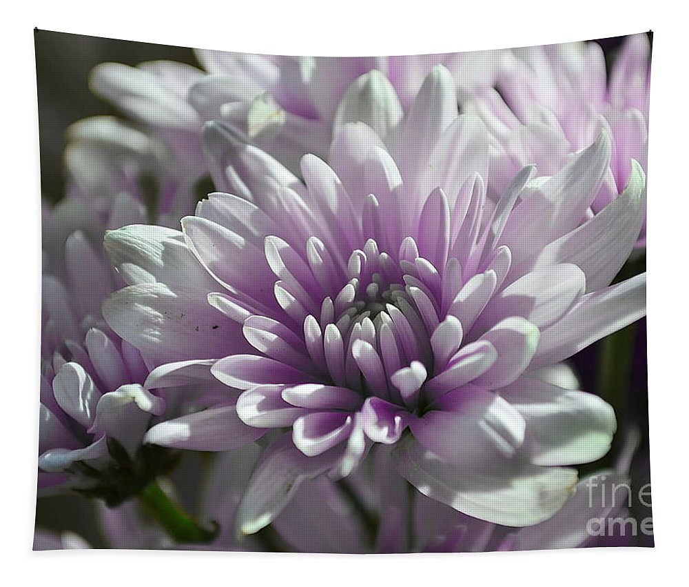 Michelle Meenawong Tapestry featuring the photograph Soft by Michelle Meenawong